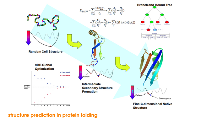 structure prediction in protein folding