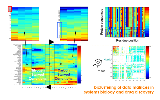 biclustering of data matrices in systems biology and drug discovery