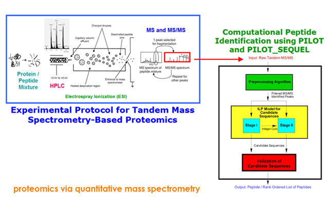 proteomics via quantitative mass spectrometry
