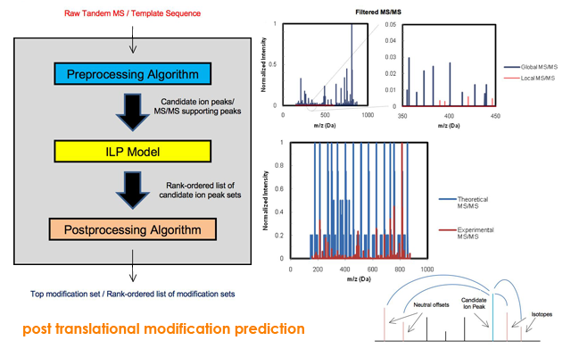post translational modification prediction
